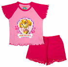 Girls Official Paw Patrol Puppy Dog Skye Shorty Pyjamas 12 Months to 4 Years