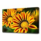 LARGE RED & YELLOW FLOWERS CANVAS PRINT EZ1320