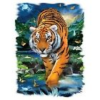 On The Prowl TIGER  Tshirt    Sizes/Colors