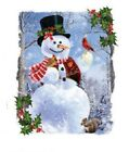 Jolly Snowman Snowman Tshirt Sizes/Colors