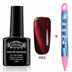 Cat Eye Gel Nail Polish Soak Off UV LED  Nail Art Manicure free Magnetic Pen