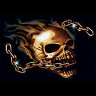 Skull With Chain T-Shirt All Sizes And Colors (69)