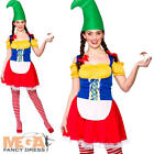 Cute Gnome Ladies Fancy Dress Garden Troll Elf Christmas Womens Adults Costume