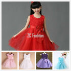 Kids Baby Girls  Flower  Pageant Ball Gown Formal Party Tutu Lace Princess Dress