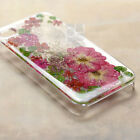 GRG Disegno Red Rose Pressed Real Dry Flower Bling Glitter Floral Hard Skin Case