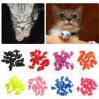 20PCS Soft Plastic Pet Dog Cat Kitten Paw Claw Nail Caps Cover Shell Protector