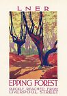 Vintage LNER Epping Forest Liverpool Street Rail Travel Poster Art Print A3 A4