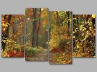 Autumn Colours Path through Forest Woods 4 Panel Split Canvas Picture Wall Art