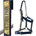 Horse Halter/Headstall - Navy & Silver- With Nameplate