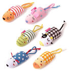 Pet Dog Animal Squeaky Squeaker Sound Toy Cotton Training Product Chew Toy