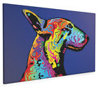 English Bull Terrier Box Canvas and Poster Print (128)