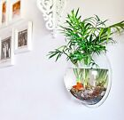 Wall Mount Fish Bowl Creative Hanging Tank Transparent Bubble Aquarium Plant Pot