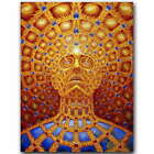Alex Grey Oversoul Trippy Psychedelic Abstract Art Silk Poster 12x18'' 20x30''