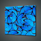 BLUE BUTTERFLIES CANVAS PICTURE PRINT WALL ART HOME DECOR FREE DELIVERY