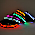 Small Dogs Collars Night Safety LED Glow Twinkle LED Pet Supplies Dog Cat Collar