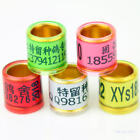50 pcs D8mm*H11mm Golden inner Circle Customized Racing Pigeon leg bands rings