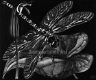 MC Escher 'Dragonfly' - FINE ART PRINT Escher Large 60cm x 50 cm Giclee Rare