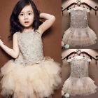US Kids Baby Princess Bridesmaid Dress Flower Girl Lace Wedding Party Dresses BD