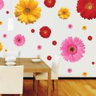 Daisy Flower 3d Removable Wall Stickers For Window Bedroom Kitchen Home Decor