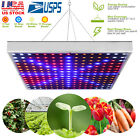 Full Spectrum LED Plant Grow Light Veg Lamp Indoor For Hydroponic Plant