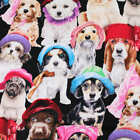 KANVAS Brand Funky Dogs In The Hat Cotton Quilting Fabric Craft FQ Meter