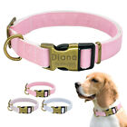 Personalized Nylon Dog Collar With Heavy Duty Release Buckle Adjustable Collar