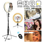 "10"" Dimmable LED Ring Light Selfie Kit w/ Tripod Stand Phone Holder Video Stuio"