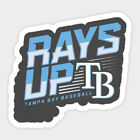 Tampa Bay Rays vinyl sticker for skateboard luggage laptop tumblers car f on Ebay