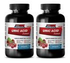 gout relief supplement - URIC ACID FORMULA NATURAL EXTRACTS 2B - kidney support