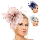 Wedding Fascinator Headband Clip Feather Flower Top Hat Lady Party Hair Decor