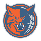 Charlotte Bobcats sticker for skateboard luggage laptop tumblers car (a) on eBay
