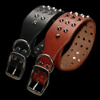 Spike Studded Dog Collar Heavy Duty Real Leather for Small Large Dog Black Brown
