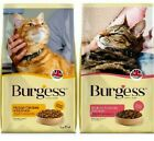 BURGESS ADULT CAT chicken duck or salmon fish dry feline biscuits food bp kibble