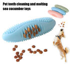 Shape Teeth Cleaning Funny Dog Chew Toys Dental Care Cat Toothbrush Pet Toy