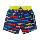 Mud Pie E1 Baby Boy Beach Fish Swim Trunks  Sunglasses 11020075 Choose Size