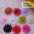 Mixed Organza Flower With Cluster Beads Sewing Scrapbooking Appliques Trim JM7B