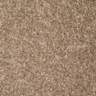 Venice Beige 604 Carpet Lounge Bedroom Stairs Cheap AnyLength x 4m £3.99 Sq m