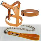 QUALITY LEATHER PLAIN HARNESS WITH COLLAR & CHROME CHAIN LEAD SET IN 8 COLORS