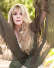 STEVIE NICKS 16 (FLEETWOOD MAC) (MUSIC) PHOTO PRINT