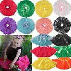 Girls Tutu Dance Dress Princess Party Costume Toddler Kids Short Skirts for 2-7Y