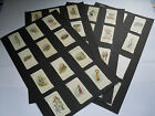 Carreras Cigarette Cards ALICE IN WONDERLAND John Tenniel 1930 Choose Your Card