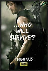 "THE WALKING DEAD - FRAMED TV POSTER / PRINT (DARYL DIXON - SURVIVE) (24"" x 36"")"