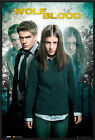 "WOLFBLOOD - FRAMED TV POSTER / PRINT (DUO - WOLF BLOOD) (SIZE: 24"" x 36"")"