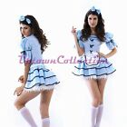 Alice in Wonderland Fancy Dress Costume with Petticoat Halloween Disney Outfit
