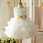 Embossed Flower Girl Organza Dress Wedding Pageant Party Holiday Size 3T-7 FT198