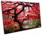 Red Maple Tree Floral Landscape Framed Canvas Wall Art Picture Print
