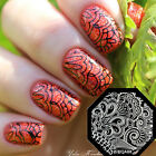 QA81-89 Nail Art Stamping Plates Image Printing Templet Mold Manicure New