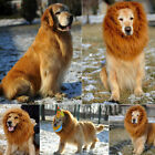 Lion Mane Wig Halloween Pet Costume Cat Fancy Dress Up Clothes for Pet Dogs