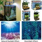 Healthy Living System Water Gardening Aquarium Kit Fish Pet Plant Table Top Tank
