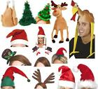 Novelty Christmas Hats Santa Elf Turkey Rudolf Snowman Unisex Adult Small Big